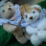 Plush, adorable teddy bears Jasmine and Oolong, all ribbons and bows.